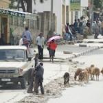 Straßenleben in Adigrat